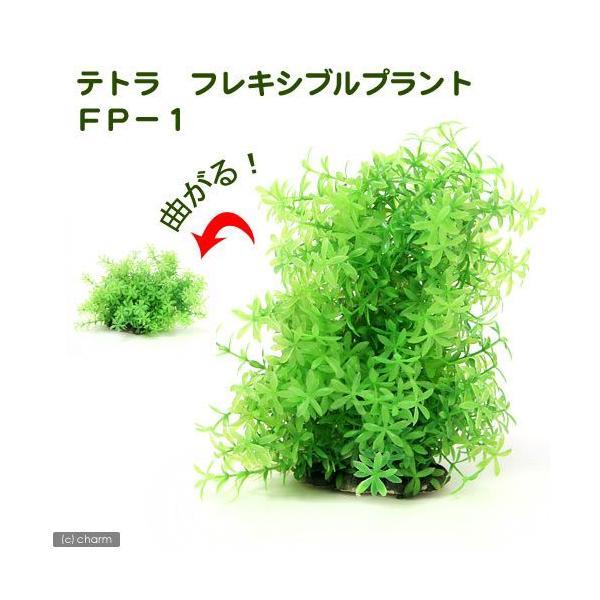 テトラ フレキシブルプラント FP−1 関東当日便|chanet