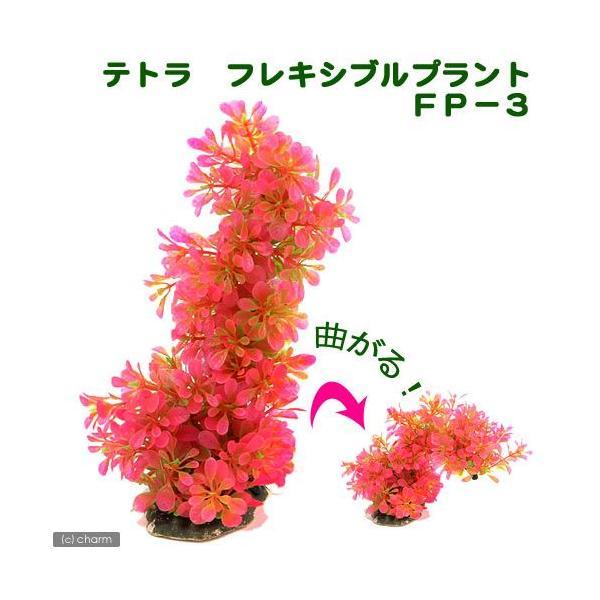 テトラ フレキシブルプラント FP−3 関東当日便|chanet