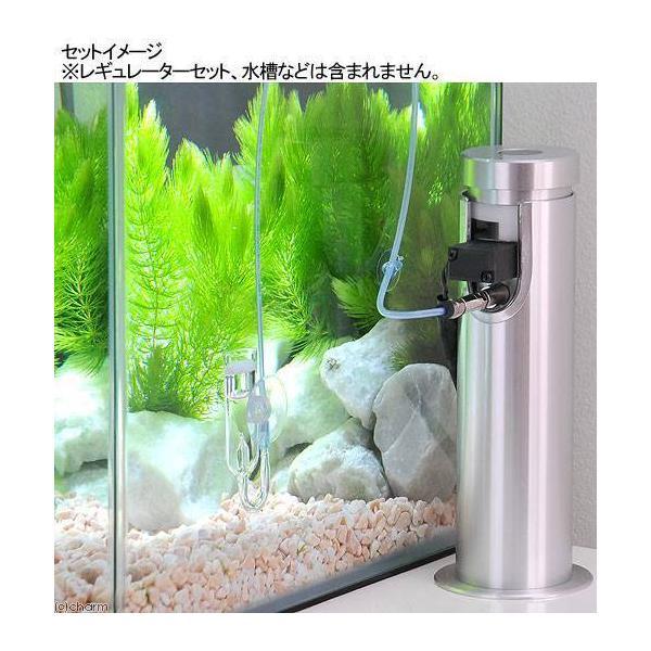 3mmチューブ(クリアブルー)2m CO2拡散器セット 関東当日便|chanet|02