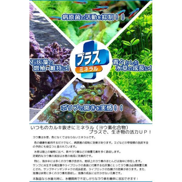 テトラ コントラコロライン プラス 1000ml 淡水・海水用 カルキ抜き 塩素中和 関東当日便|chanet|02