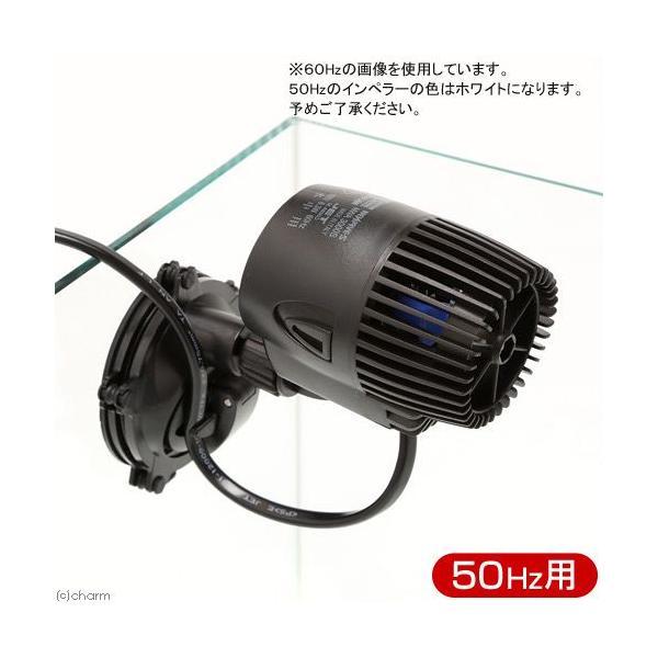 50Hz ネワウェーブ NWA3000S 50Hz(東日本用) 水流ポンプ 沖縄別途送料 関東当日便|chanet