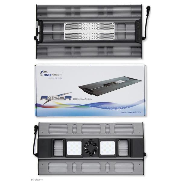 maxspect LEDライティングシステム レイザー R420R 130W 15000K 沖縄別途送料 関東当日便|chanet|04
