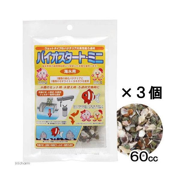 バイオスタート ミニ 海水用 60cc×3個  バクテリア バクテリア付ろ材 カキガラ ゼオライト 海水魚 サンゴ 関東当日便|chanet