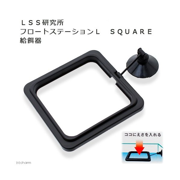 LSS研究所 フロートステーションL SQUARE 関東当日便|chanet