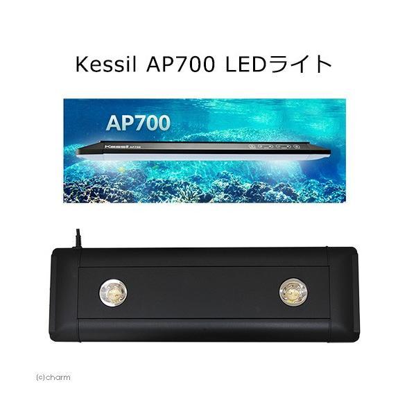 Kessil AP700