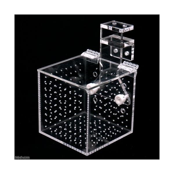 フォルス アクリル製マルチBOX RF―1S(細穴タイプ) 関東当日便 chanet