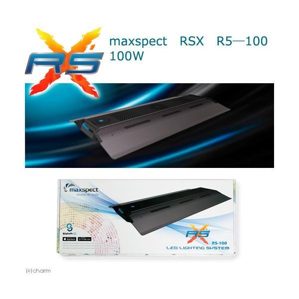 maxspect RSX R5―100 100W 沖縄別途送料 関東当日便|chanet