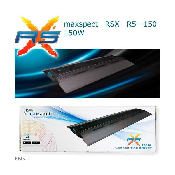 maxspect RSX R5―150 150W 沖縄別途送料 関東当日便|chanet