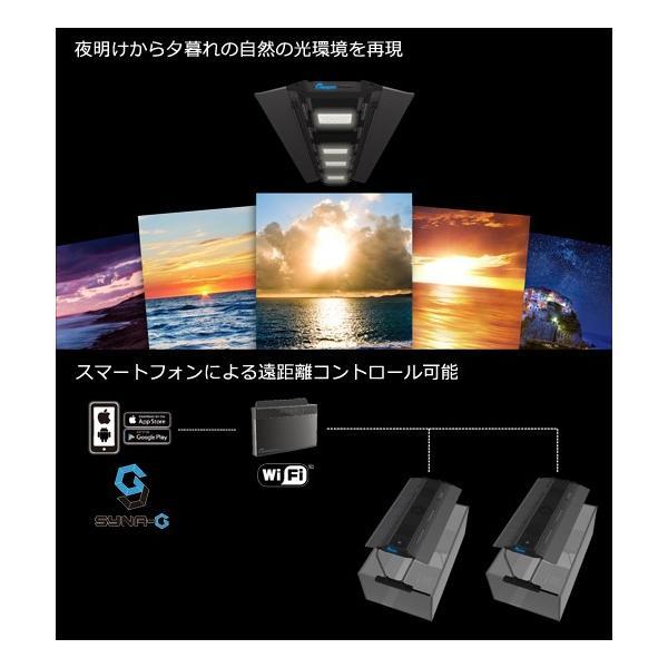 maxspect RSX R5―150 150W 沖縄別途送料 関東当日便|chanet|04