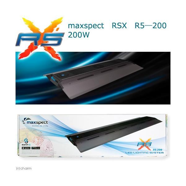 maxspect RSX R5―200 200W 沖縄別途送料 関東当日便|chanet
