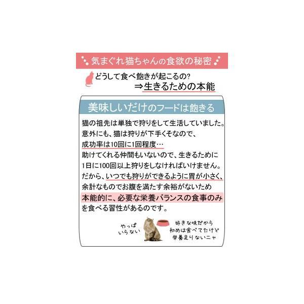 ロイヤルカナン 猫 ステアライズド 成猫用 85g 1ボール12袋 9003579311301 関東当日便|chanet|02