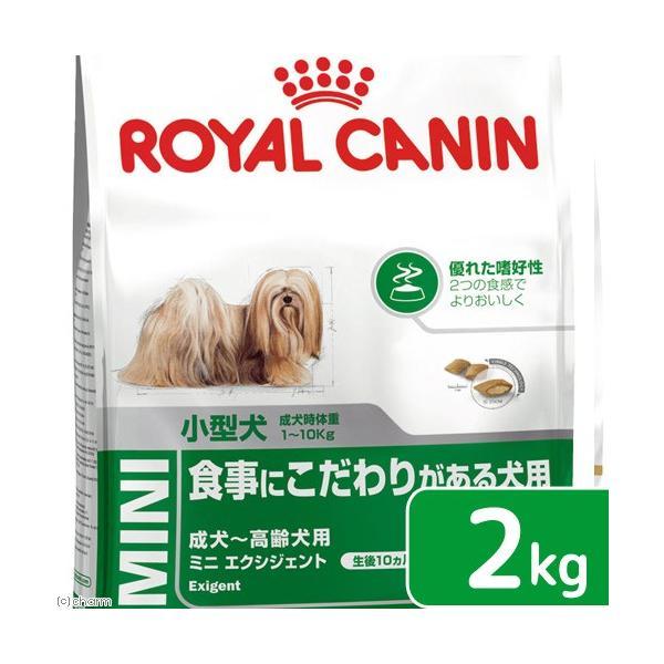ロイヤルカナン ミニ エクシジェント 成犬・高齢犬用 2kg 3182550795197 ジップ付 関東当日便 chanet