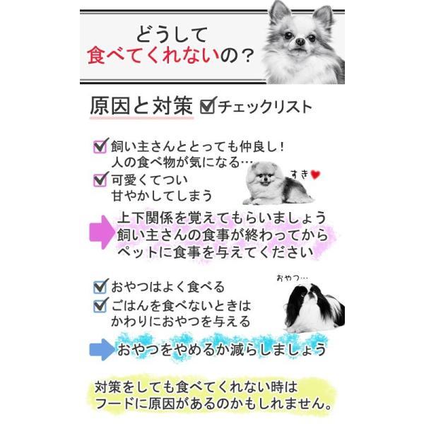ロイヤルカナン ミニ エクシジェント 成犬・高齢犬用 2kg 3182550795197 ジップ付 関東当日便 chanet 02