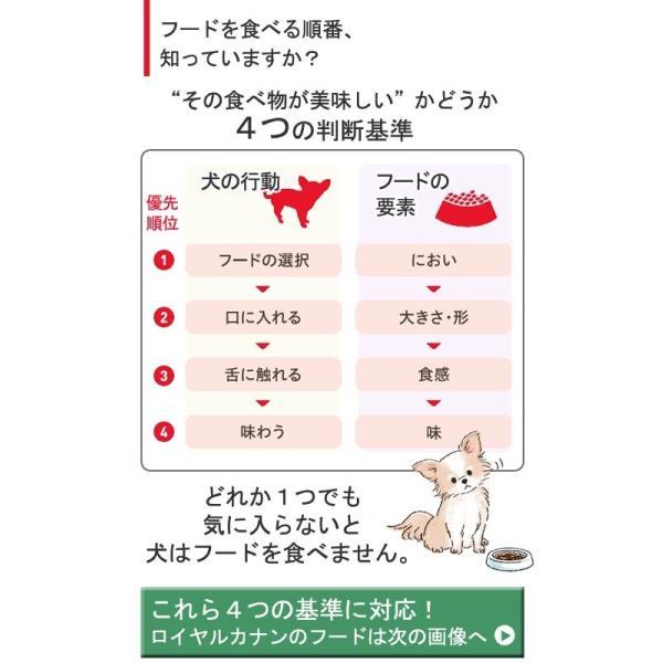 ロイヤルカナン ミニ エクシジェント 成犬・高齢犬用 2kg 3182550795197 ジップ付 関東当日便 chanet 03