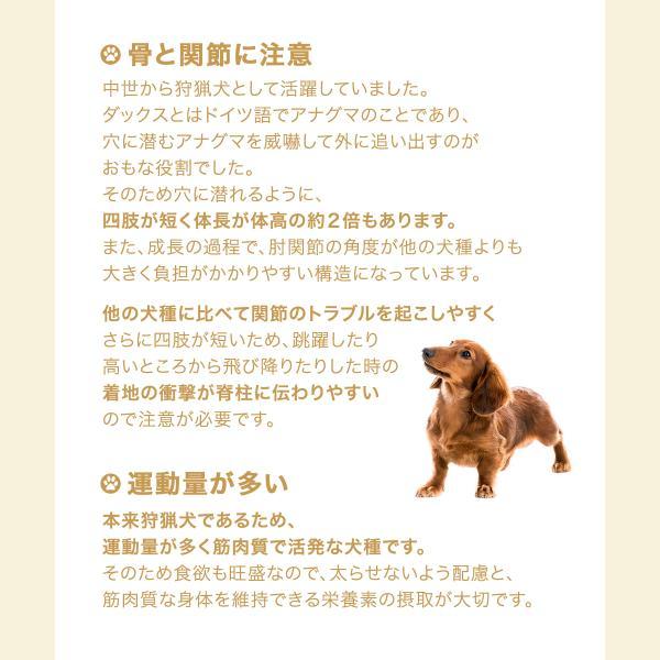 ロイヤルカナン ダックスフンド 中・高齢犬用 3kg ジップ付 関東当日便|chanet|02