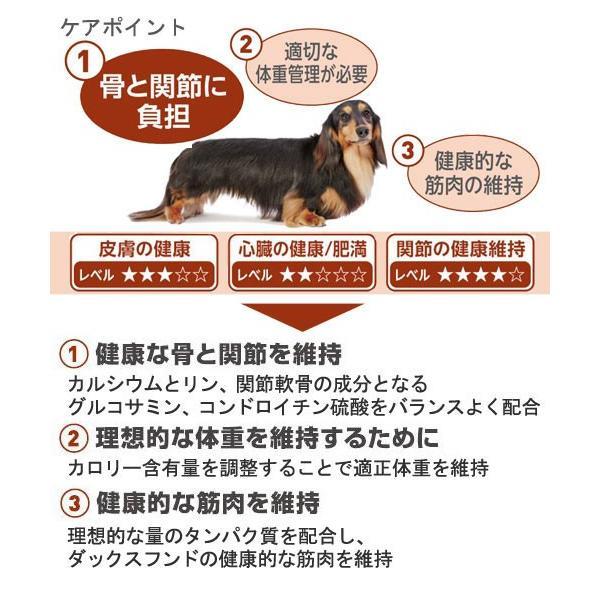 ロイヤルカナン ダックスフンド 中・高齢犬用 3kg ジップ付 関東当日便|chanet|03