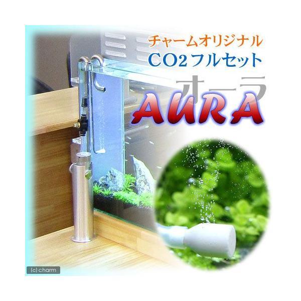 CO2フルセット AURA RCG0328・専用スタンド バブルカウンター付き 沖縄別途送料 関東当日便|chanet