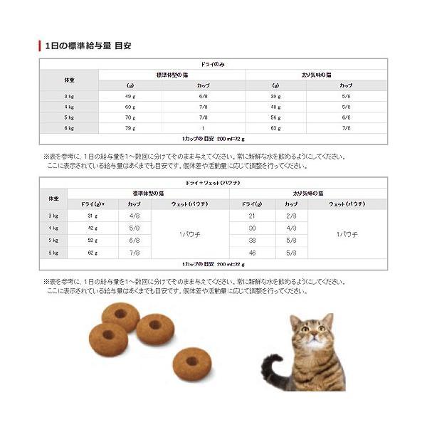 ロイヤルカナン 猫 アペタイト コントロール ステアライズド 成猫用 4kg 3182550805278 お一人様5点限り ジップ付 関東当日便|chanet|03