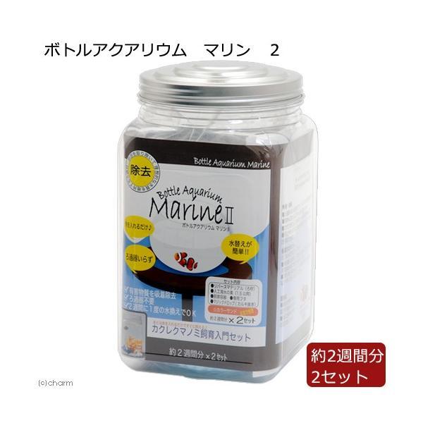 ボトルアクアリウム マリン 2 関東当日便 chanet