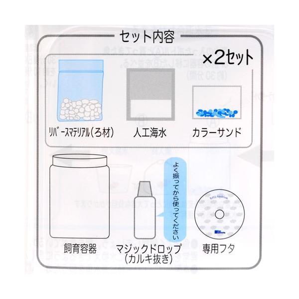 ボトルアクアリウム マリン 2 関東当日便 chanet 02