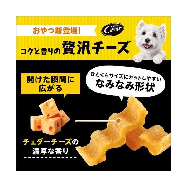 シーザースナック チェダー香る コクと香りの贅沢チーズ 100g 関東当日便|chanet|02