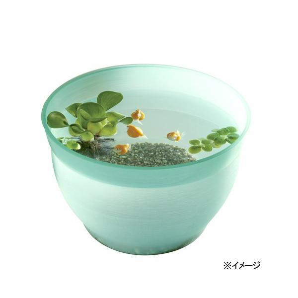 スドー金魚の小鉢そーだ(曹達)金魚鉢
