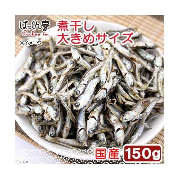 国産 煮干し 150g 大きめ 無添加 無着色 犬猫用おやつ ぱっくん亭 関東当日便|chanet