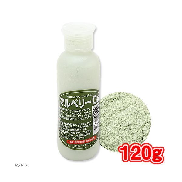 マルベリーCa(カルシウム) 120g 両生・爬虫類専用 飼料添加剤 爬虫類 鳥 インコ サプリメント 添加剤