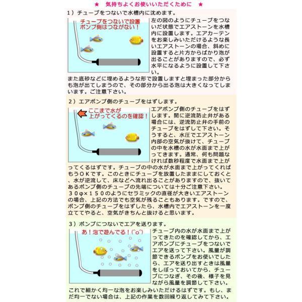 いぶきエアストーン 直径23×100 + SSPP−2S+逆止弁+キスゴム×3+チューブ3m 60〜120cm水槽用エアーポンプ 関東当日便|chanet|03