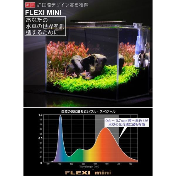 正規品 水草が育つ 小型水槽用LEDライト FLEXI mini シルバー 熱帯魚 照明 沖縄別途送料 アクアリウムライト 関東当日便|chanet|04