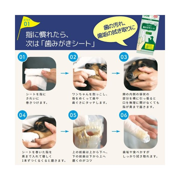 ライオン ペットキッス 歯みがきシート 犬・猫用 アップルの香り 30枚 関東当日便 chanet 03
