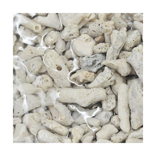 (海水魚)ろ材 バクテリア付き ばくとサンドXLサイズ ネット入り 9L(約6.9kg)|chanet|02