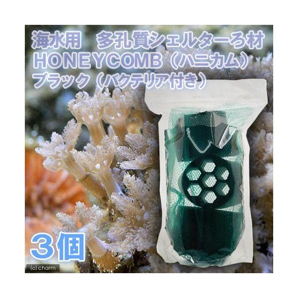 (海水魚)ろ材 海水用 多孔質シェルターろ材 HONEYCOMB(ハニカム)ブラック(バクテリア付き)(3個) 北海道・九州航空便要保温|chanet