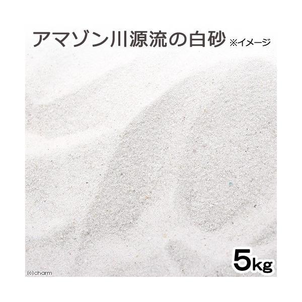 アマゾン川源流の白砂 5kg(約3L) 微粒 底砂 底床 コリドラス エイ お一人様4点限り