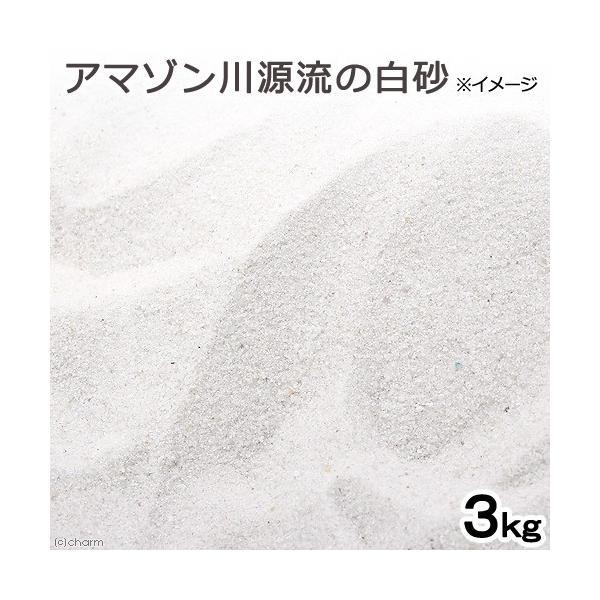 アマゾン川源流の白砂 3kg(約1.8L) 微粒 底砂 底床 コリドラス エイ お一人様8点限り