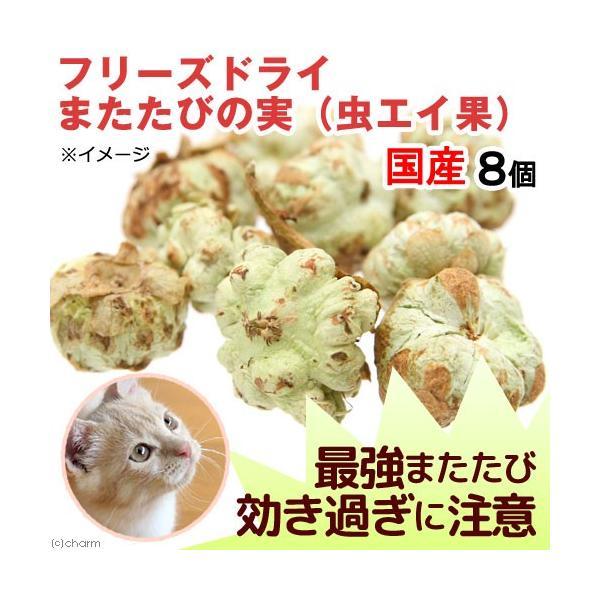 フリーズドライ 国産 またたびの実 虫エイ果  効き目(強) 8個 猫用 無添加 無着色|chanet