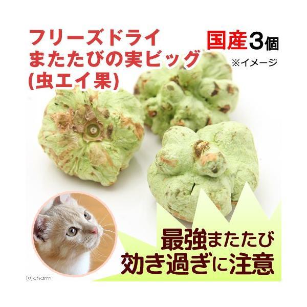 フリーズドライ 国産 またたびの実ビッグ 虫エイ果  効き目(強) 3個 猫用 無添加 無着色