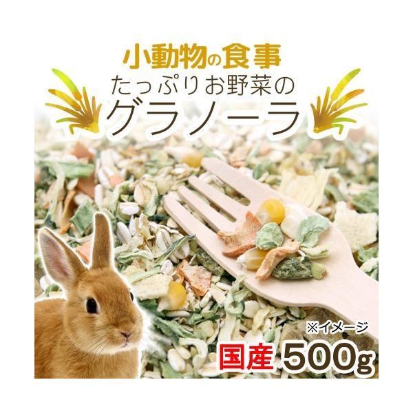 小動物の食事 たっぷりお野菜のグラノーラ 大容量 500g おやつ 無添加 無着色