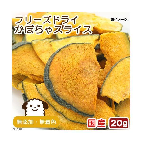 国産 フリーズドライ かぼちゃスライス 20g 犬用 無添加 無着色 PackunxCOCOA