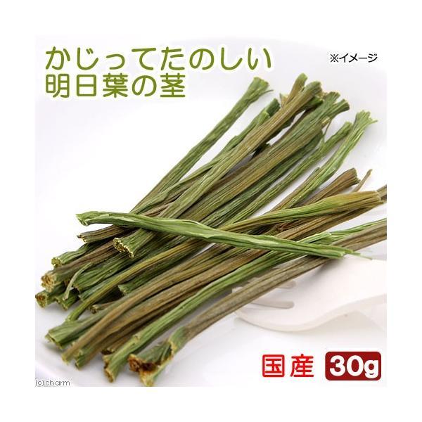 USAYAMA 国産 かじってたのしい 明日葉の茎 30g 小動物用のおやつ 無添加 無着色 かじり木 うさぎ