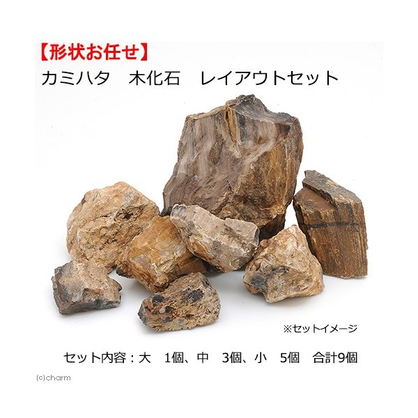 カミハタ木化石レイアウトセット45〜75cm水槽向け形状おまかせ