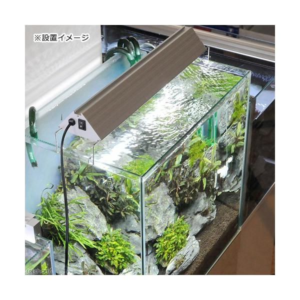 アクロ TRIANGLE LED BRIGHT 450 2800lm Aqullo Series 45cm水槽用照明 沖縄別途送料 関東当日便|chanet|04