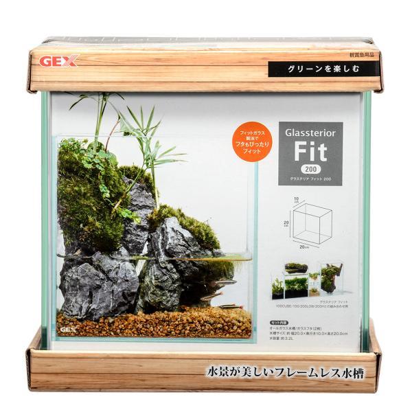 GEXグラステリアフィット200お一人様5点限り