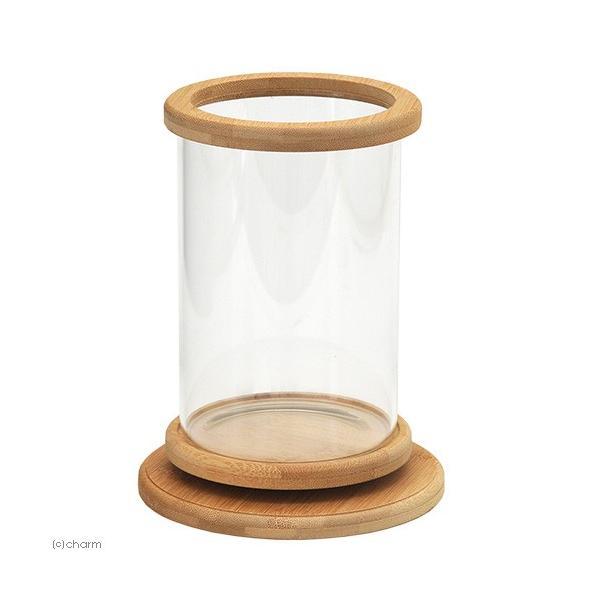 Bamboo Bottle R1
