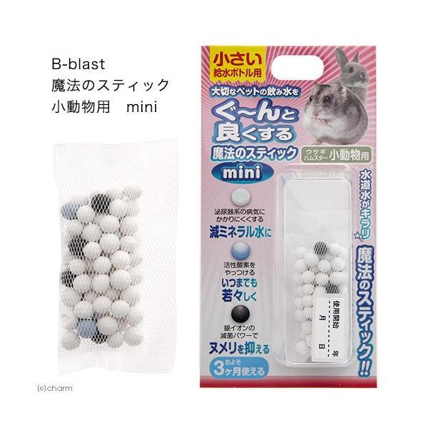  B−blast 魔法のスティック 小動物用 mini