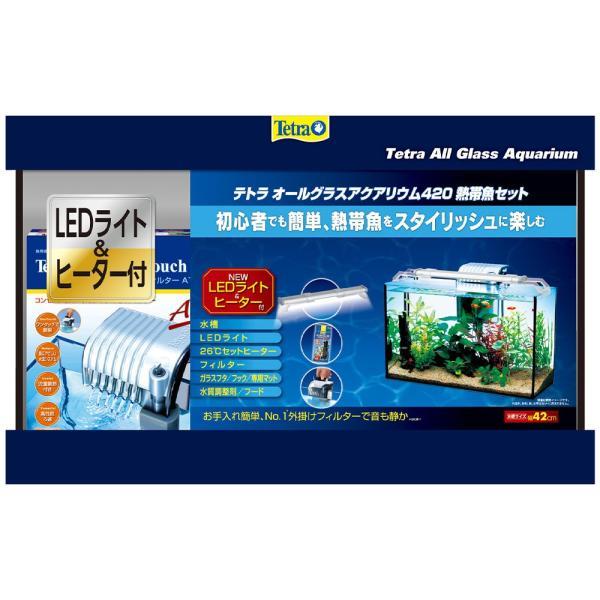 テトラ オールグラスアクアリウム420 熱帯魚セット 初心者 お一人様1点限り 沖縄別途送料