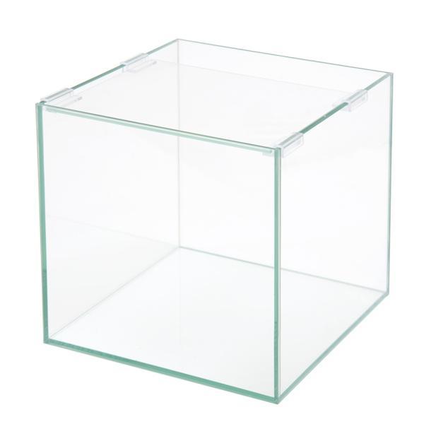 25cmキューブ水槽(単体)アクロ25N(25×25×25cm)オールガラス水槽Aqulloアクアリウム用品お一人様2点限り