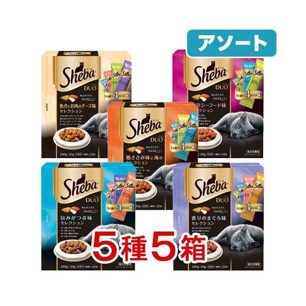 アソート シーバデュオ 240g 味のお試し5種セット 関東当日便|chanet