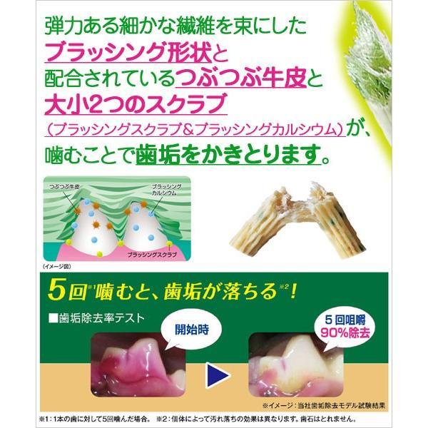 ライオン ペットキッス 食後の歯みがきガム 低カロリータイプ 超小型犬用 エコノミーパック 100g 関東当日便 chanet 02