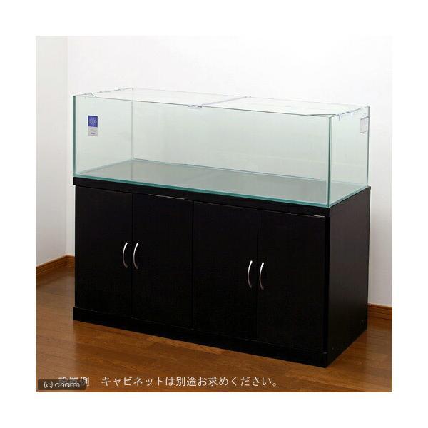□(超大型)レグラスフラット F−1200LOW(120×45×36cm)120cm水槽(単体) 本州四国送料無料・同梱不可・代引不可 才数300